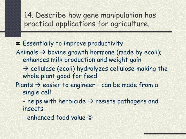 14. Describe how gene manipulation has practical applications for agriculture.