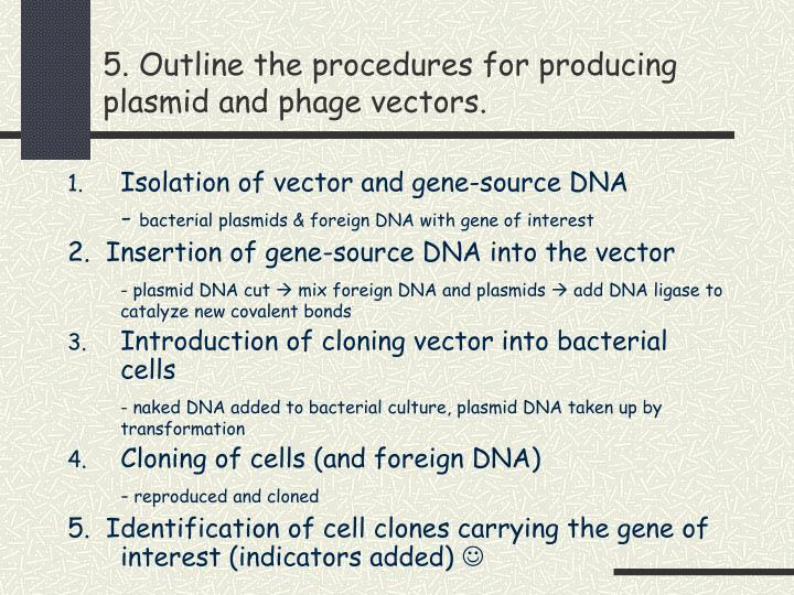 5. Outline the procedures for producing plasmid and phage vectors.