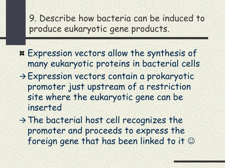 9. Describe how bacteria can be induced to produce eukaryotic gene products.