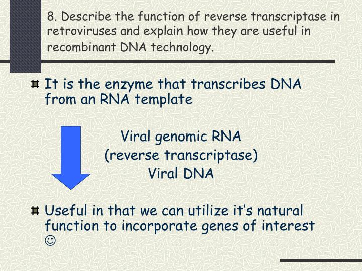 8. Describe the function of reverse transcriptase in retroviruses and explain how they are useful in recombinant DNA technology.