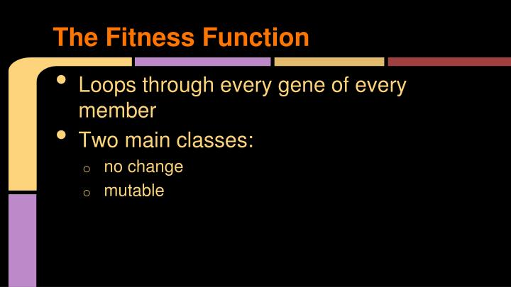 The Fitness Function