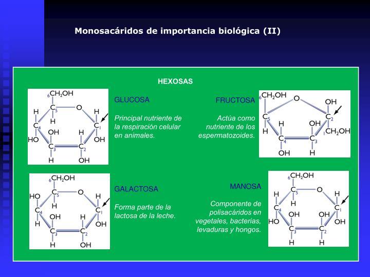Monosacáridos de importancia biológica (II)