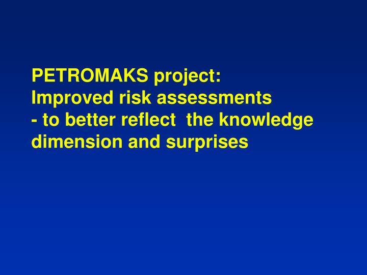 PETROMAKS project: