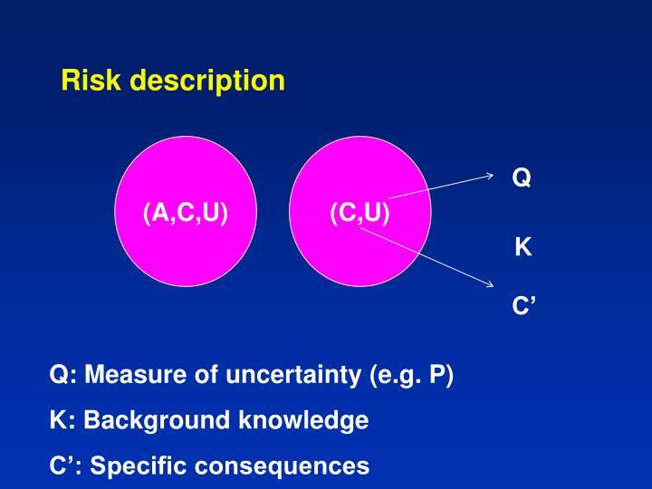Risk description