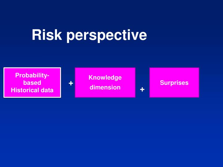 Risk perspective