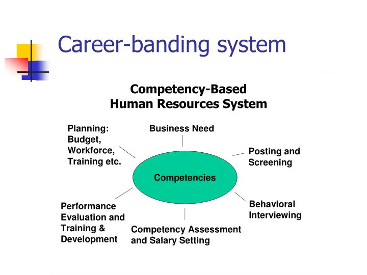 Career-banding system