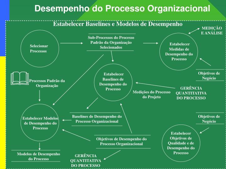 Desempenho do Processo Organizacional