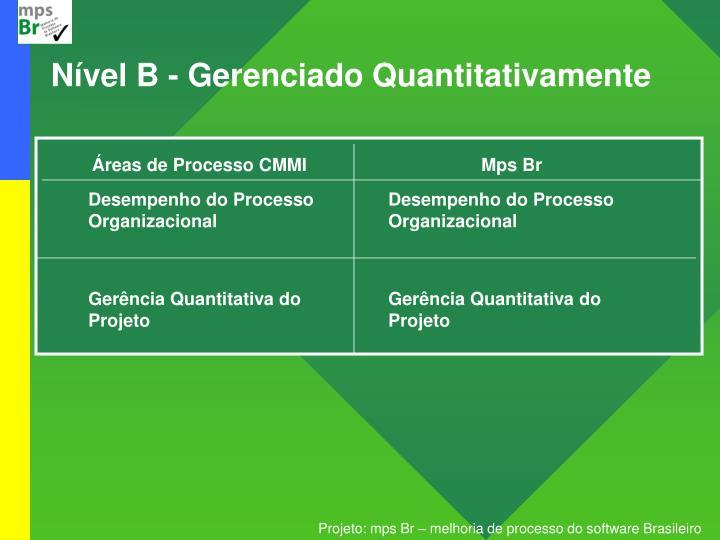 Nível B - Gerenciado Quantitativamente