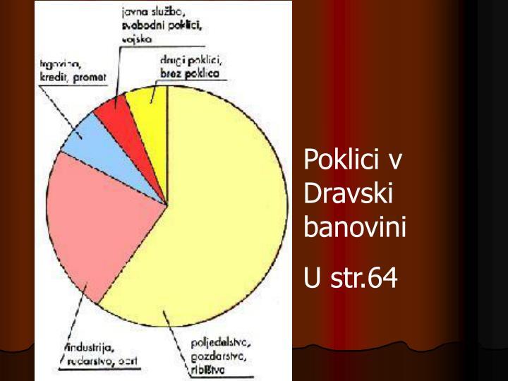 Poklici v Dravski banovini