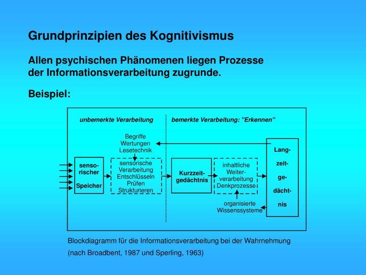 Grundprinzipien des Kognitivismus