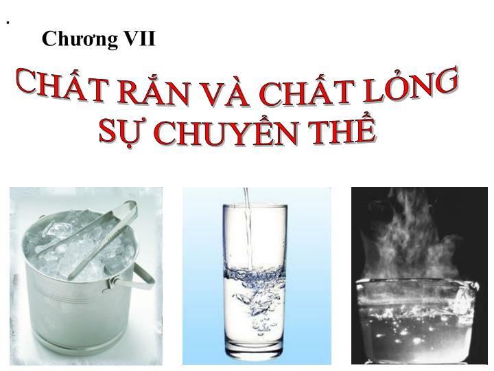 Chương VII