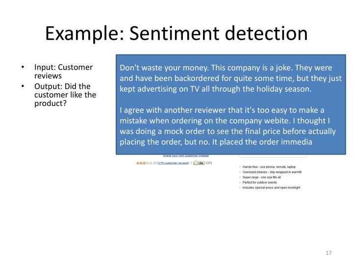 Example: Sentiment detection