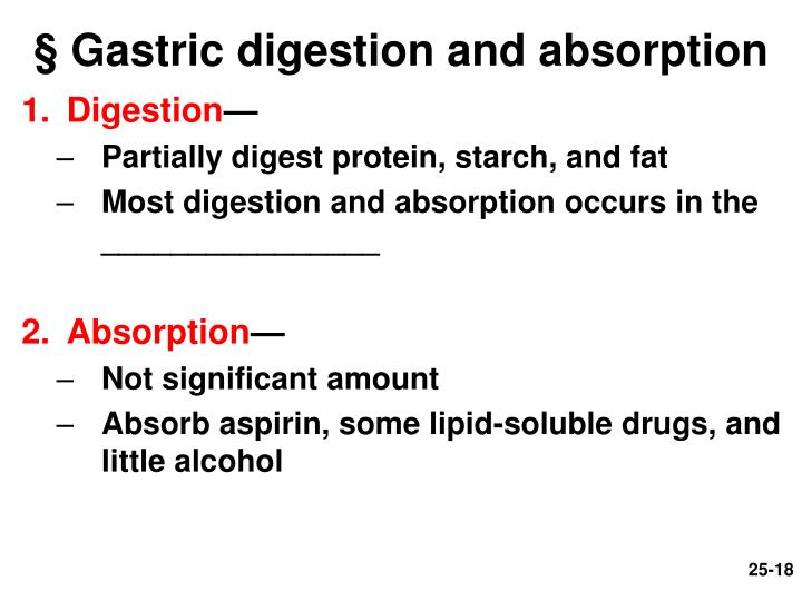 § Gastric digestion and absorption