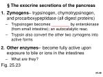the exocrine secretions of the pancreas