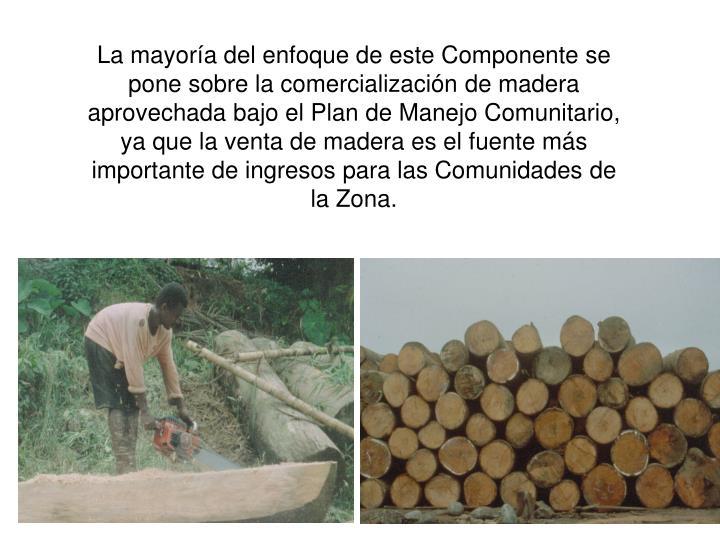 La mayoría del enfoque de este Componente se pone sobre la comercialización de madera aprovechada bajo el Plan de Manejo Comunitario, ya que la venta de madera es el fuente más importante de ingresos para las Comunidades de la Zona.