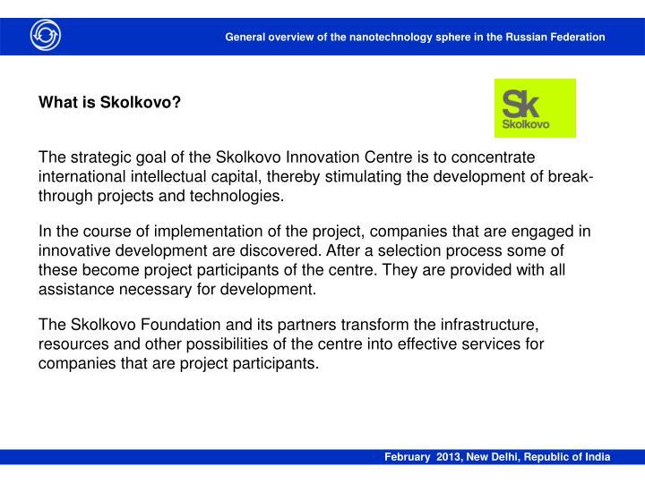 What is Skolkovo?