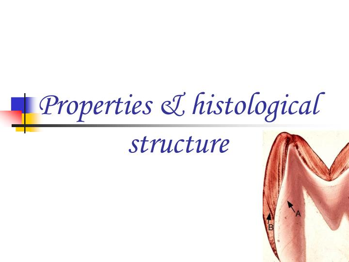 Properties & histological structure