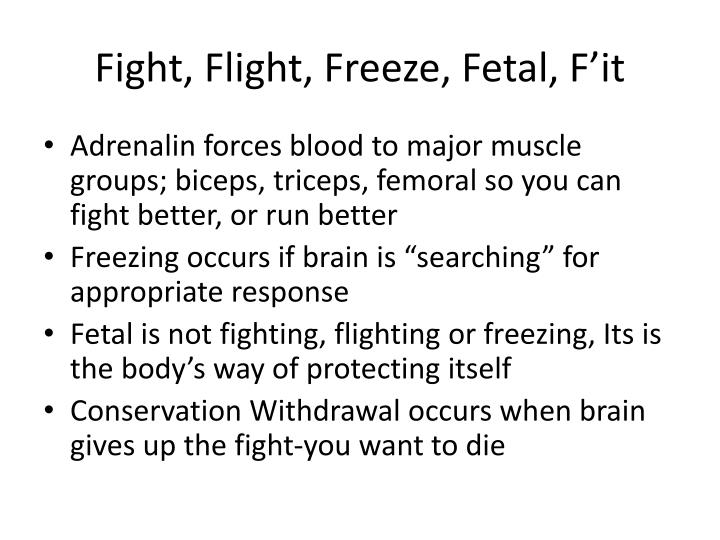 Fight, Flight, Freeze, Fetal, F'it