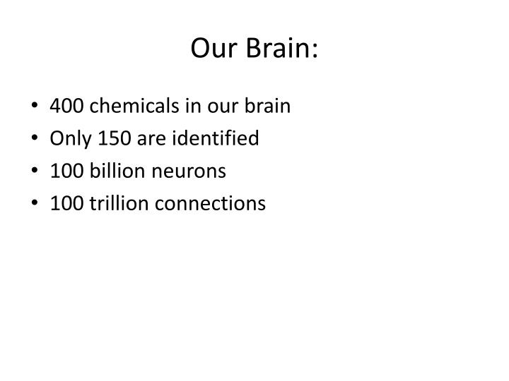 Our Brain: