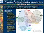 promoting regional integration opportunities and challenges