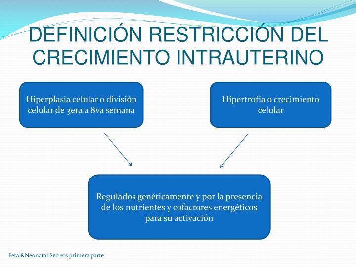 DEFINICIÓN RESTRICCIÓN DEL CRECIMIENTO INTRAUTERINO