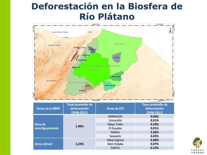 Deforestación en la