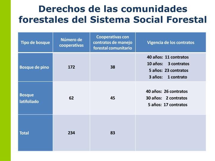 Derechos de las comunidades forestales del Sistema Social Forestal