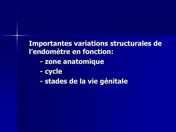 Importantes variations structurales de l'endomètre en fonction: