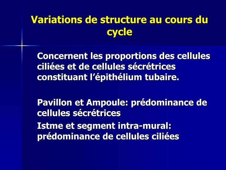 Variations de structure au cours du cycle