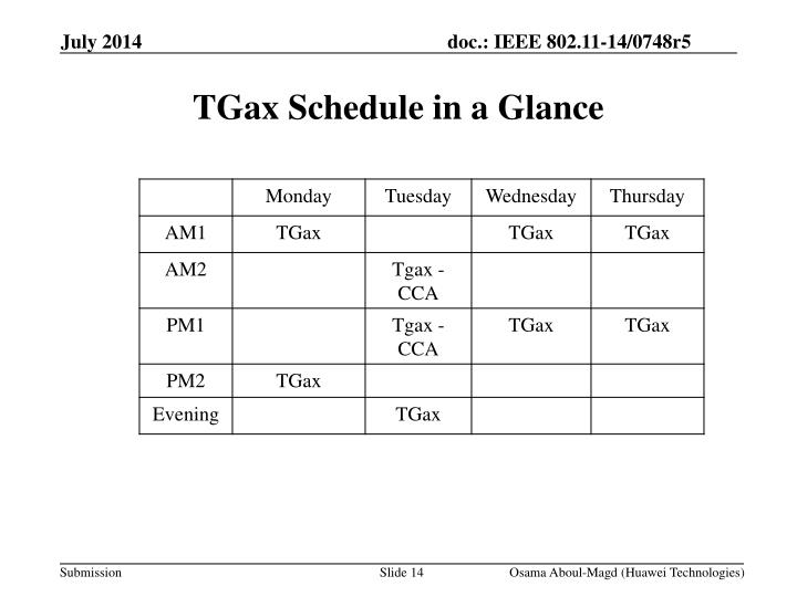 TGax Schedule in a Glance