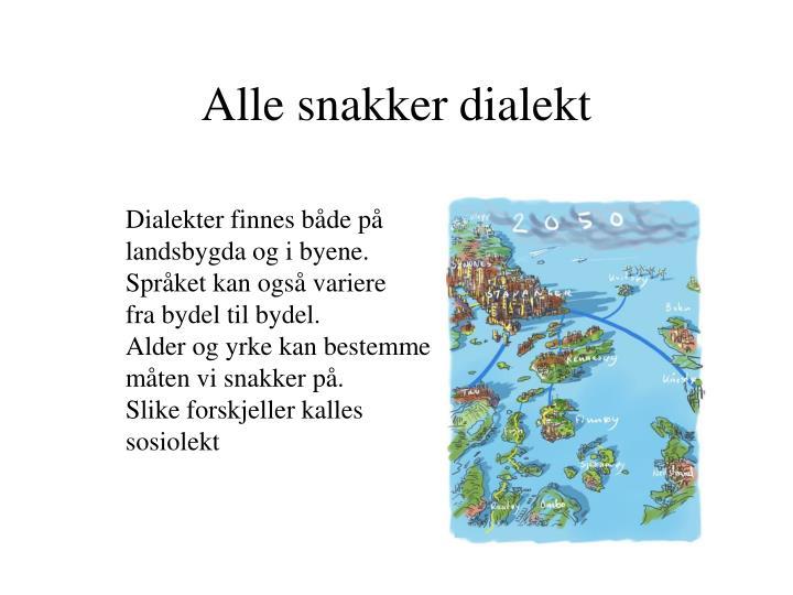 Alle snakker dialekt
