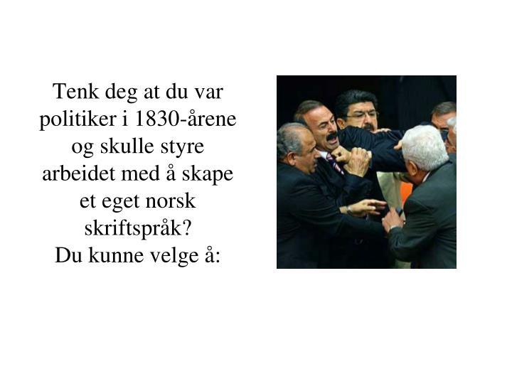 Tenk deg at du var politiker i 1830-årene og skulle styre  arbeidet med å skape et eget norsk  skriftspråk?