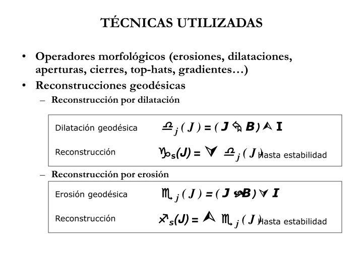 TÉCNICAS UTILIZADAS