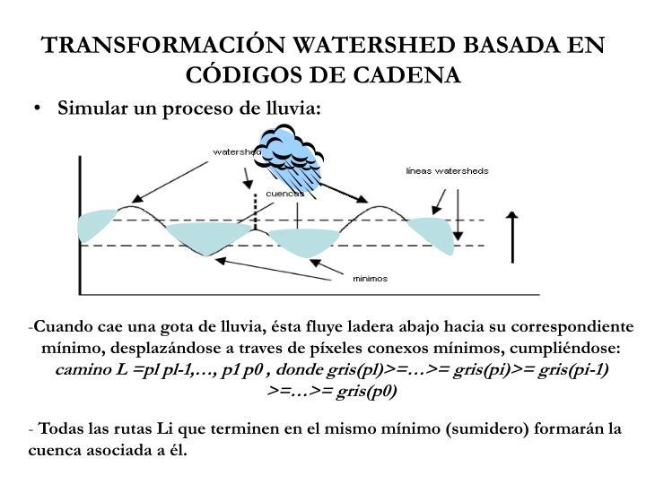 TRANSFORMACIÓN WATERSHED BASADA EN CÓDIGOS DE CADENA