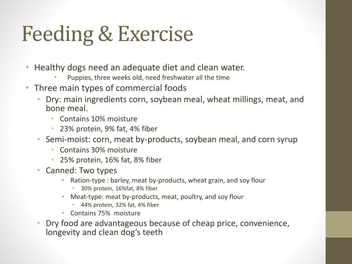 Feeding & Exercise