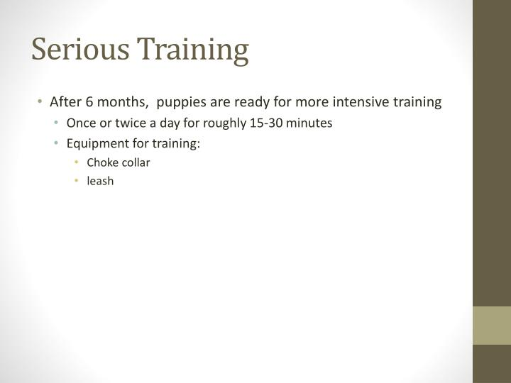 Serious Training