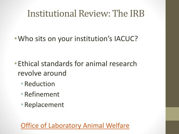 Institutional Review: The IRB