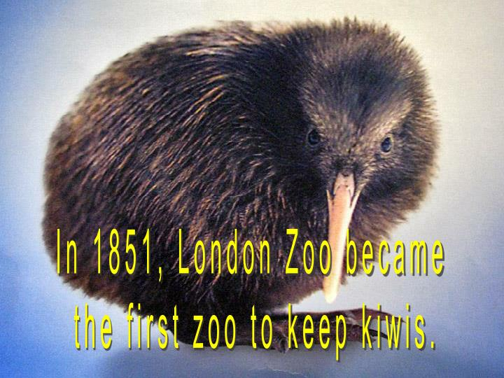 In 1851, London Zoo became