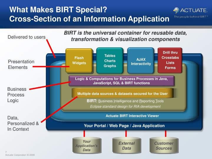 What Makes BIRT Special?