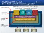 what makes birt special cross section of an information application