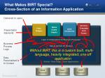 what makes birt special cross section of an information application1