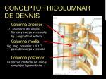 concepto tricolumnar de dennis