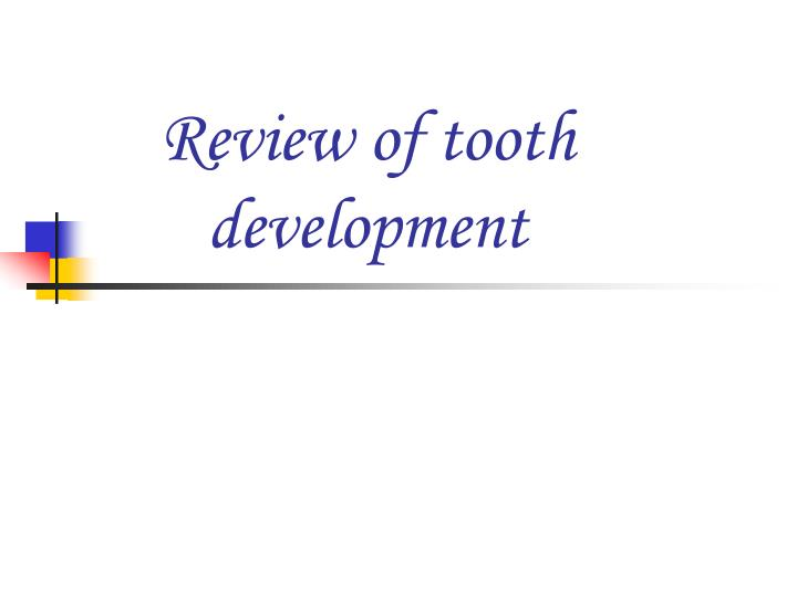 Review of tooth development