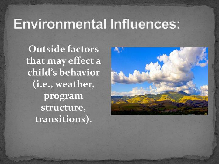 Environmental Influences: