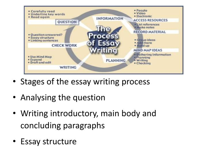 Stages of the essay writing process