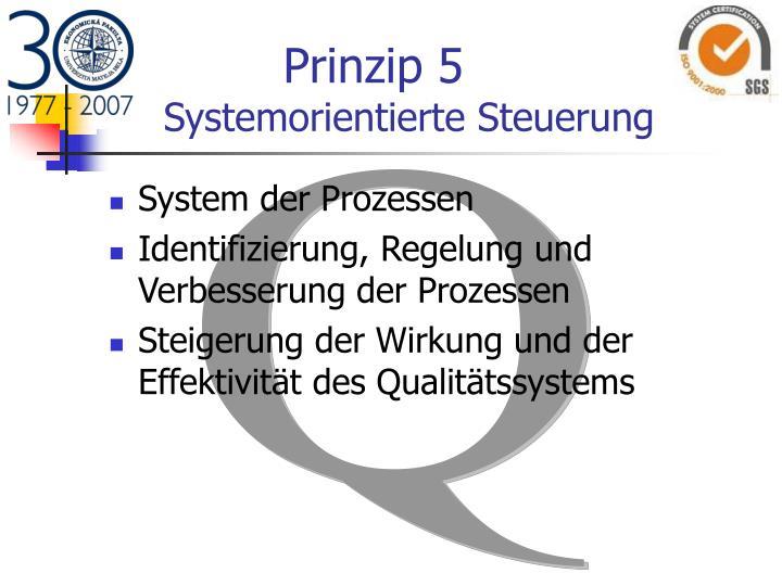 Prinzip 5