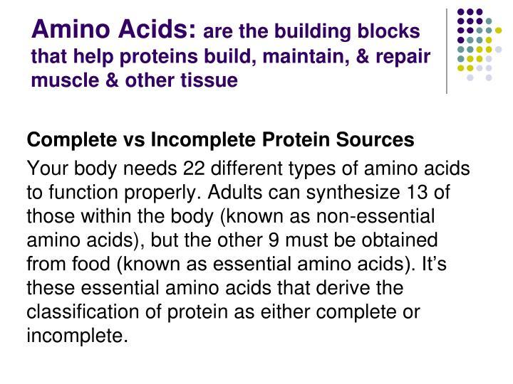 Amino Acids: