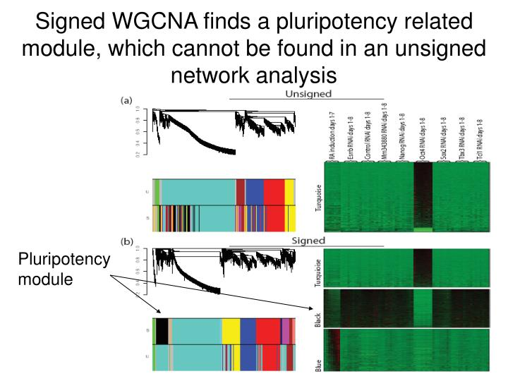 Signed WGCNA finds a pluripotency related module, which cannot be found in an unsigned network analysis