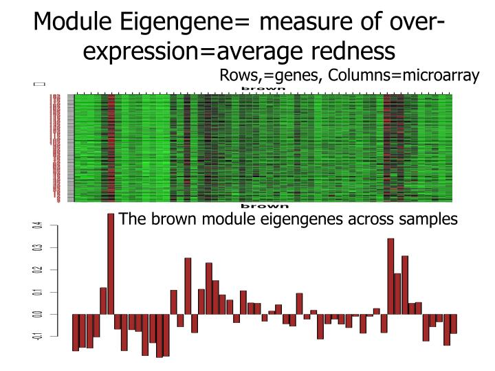 Module Eigengene= measure of over-expression=average redness