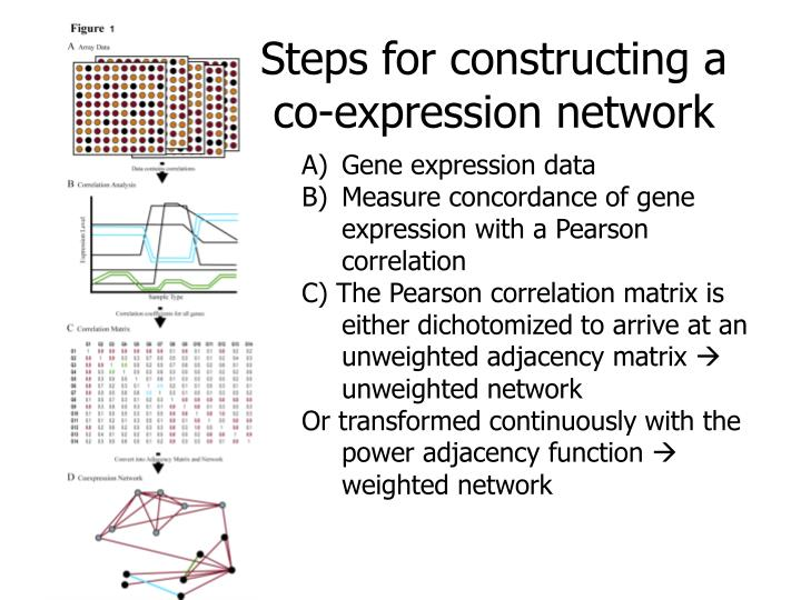 Steps for constructing a